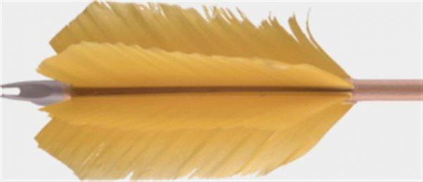 Fichtenholzpfeil FluFlu 11/32